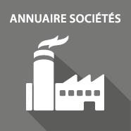 briqueannuaire-societes2x