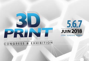 Vignette 3D Print